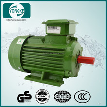 Induction motor, electric motor