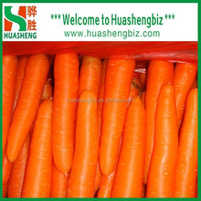 2015 Fresh Red Super Quality Carrots to worldwide at a good price and delicious taste