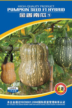 good taste beautiful sheap yellow green small pumpkin seeds
