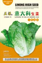 hybrid lettuce seeds