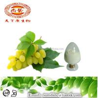 Grape Seed Extract Powder Resveratrol 99%/ Water Soluble Resveratrol Powder 99%