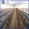 china wholesale transport cage chicken/chicken layer battery cage made in china