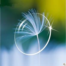 (CE) hydrophobic coating lens