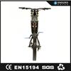 MTB king-- 3kw 5kw mountain electric bikes