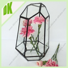 Put in a guest bedroom, or in any well-lit room(and what room doesn't need plants?) flat bottom geometric glass tabletop vase