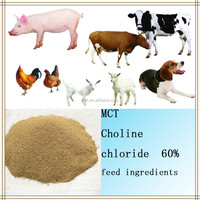 Natural poultry Choline Chloride 60% feed ingredients