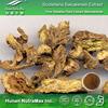 Radix Scutellariae Powder Extract Baicalin 20%~98%