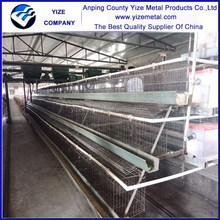 Fábrica de baterias gaiolas de galinhas poedeiras galvanizado a quente gaiola de galinha para venda