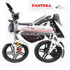 PT- E001 Hot Sale Popular Cheap Electric Trike Motorcycle