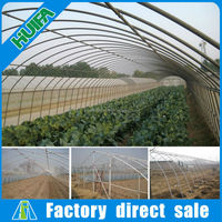 Best selling single vegetable tunnel greenhouse equipment in China
