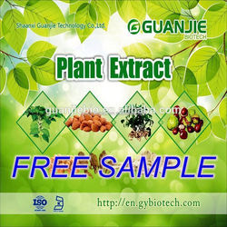 100% top quality organic black tea extract with free sample