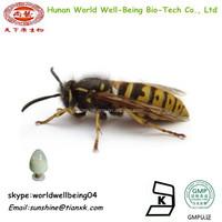 Pure Bee Venom Powder / Bee Venom 91% 96% Powder For sale / Honey Bee Venom