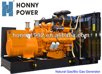 China Brand High Efficiency Biogas Generator