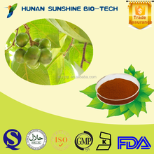 100% Natural Pygeum Africanum Extract 2.5%/7%/13% Phytosterol CAS: 83-46-5