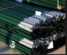 Export customize fence T post made in China