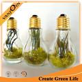 ampoule claire 200ml décoration en forme de bouteille en verre des ménages