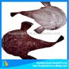 superior frozen superior quality adequate monkfish exporter