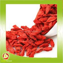good quality natural dried goji berry in bulk