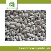 45-85pcs specifacation white kidney beans