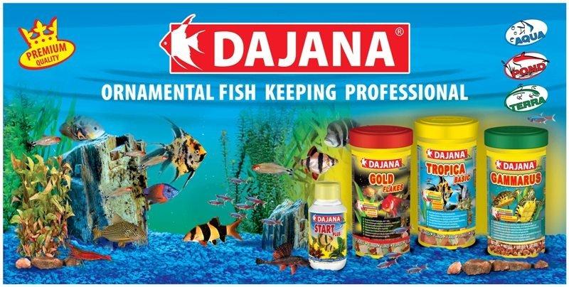 Aquarium Fish Food - Buy Aquarium Fish Food Product on Alibaba.com