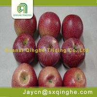 sweet red star apple organic fruits