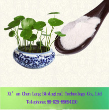 Herb Plant Centella Asiatica Oil Good for Women