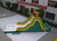 small cheap Palm tree inflatable water slide with pool for kids