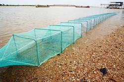 Great wall Fish Use folding crab trap