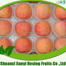 Organic Bulk Fresh granny smith fuji Apple