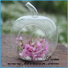 Best Seller! Glass Terrarium,Hanging Planter,Small Hand Blown Glass Art Vase