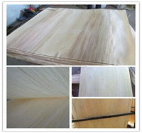 2mm vietnam export products poplar wood veneer