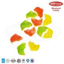 Fish shape candy gummy