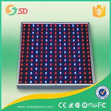High Efficiency 11 Band Led Grow Lights 300w,Led Grow Light Bar 200w-600w With 3 Years Warranty