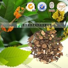 Guangxi Top grade Cassia Twig Ramulus Cinnamomi