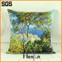 custom decorative sinomax pillow
