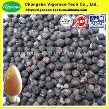 vitex chasteberry extract/chasteberry extract 5%/chasteberry extract
