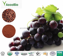 Nature Grape Seed, Grape Seed Extract powder in bulk