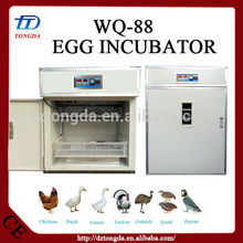 Hot selling parrot hatching eggs with great price