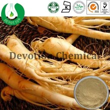Natural Panax Ginseng Extract 95%