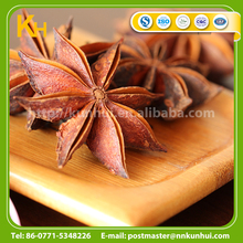 Food enhancer spices high quality star anise fruit spice