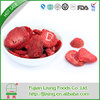 TOP SELL Excellent quality freeze dried strawberry with good price