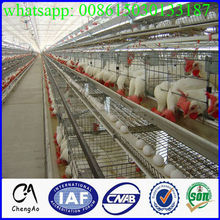 CA special factory chicken cage for sale in philippines