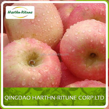 Golden Supplier Red Delicious US Apples - Now Packing