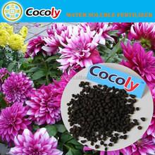 COCOLY Granular Water Soluble Fertilizer phosphoric acid preservative