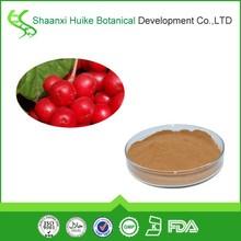 schisandra chinensis/schisandrae chinensis fructus/fructus schisandra