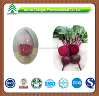 GMP factory supply herb Red Beet Juice Powder from Red Beet Root Betanin