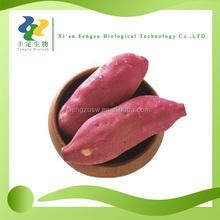 Hot sale antioxidant fruits extract sweet purple potatoes