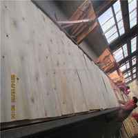 Luan plywood/Philippine mahogany plywood for furniture