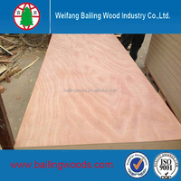 poplar core red meranti plywood for Indoor Furniture