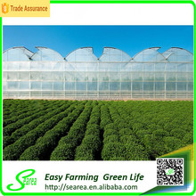 Agricultural rodent roof green house for flower